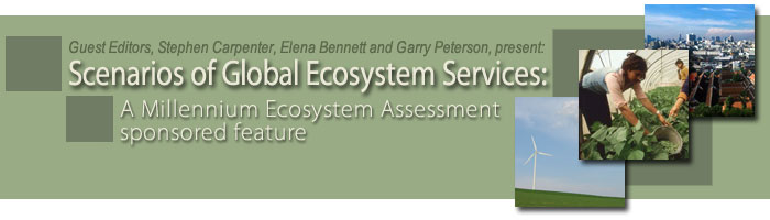 Scenarios of global ecosystem services