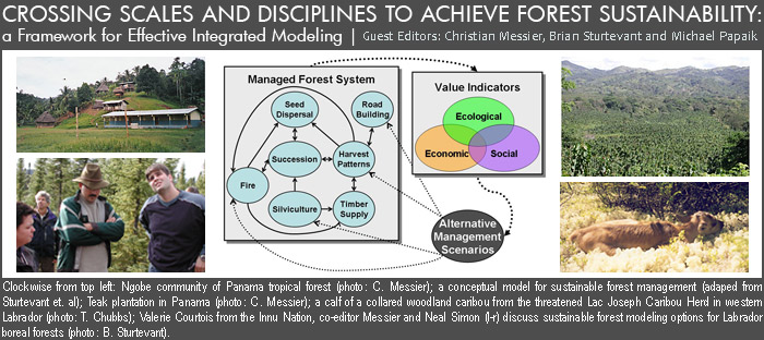 Crossing Scales and Disciplines to Achieve Forest Sustainability