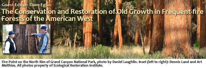 The Conservation and Restoration of Old Growth in Frequent-fire Forests of the American West