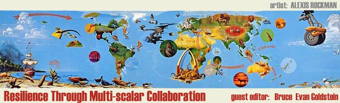 Resilience Through Multi-scalar Collaboration