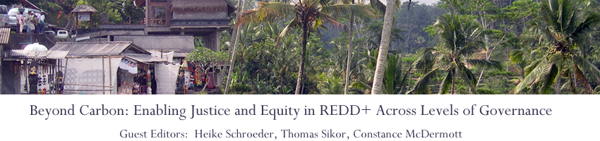 Beyond Carbon: Enabling Justice and Equity in REDD+ Across Levels of Governance