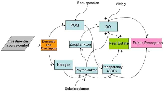 Fig  5  The Feedback Loop Involving The Ecosystem  Social