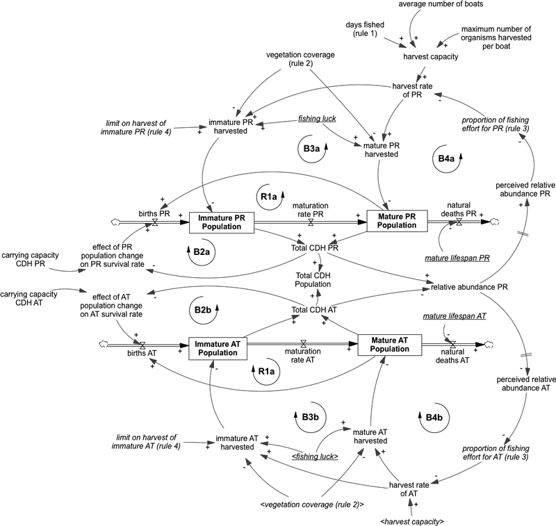 fig  2  causal loop diagram showing the feedback loops and key variables in  the model  each arrow has a positive sign (+) or negative sign (–), which