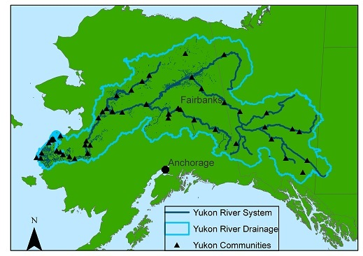 Fig. 4. Map of the Yukon River Drainage and communities. Yukon River Map on lake ontario, sierra nevada map, kenai river map, black hills map, hudson bay, colorado river map, klondike gold rush, alaska map, canadian shield map, canada map, bering sea, hudson river map, st. lawrence river map, columbia river, mackenzie river, bering sea map, great bear lake, bay of fundy, cascade range map, lake superior map, amazon river, yellowstone river map, mount mckinley, rio grande map, yellow river, dawson city, klondike river map, fairbanks map, baffin bay map, colorado river, congo river, rio grande, lake erie, saint lawrence river, great slave lake, tanana river map, aleutian islands map, copper river map,