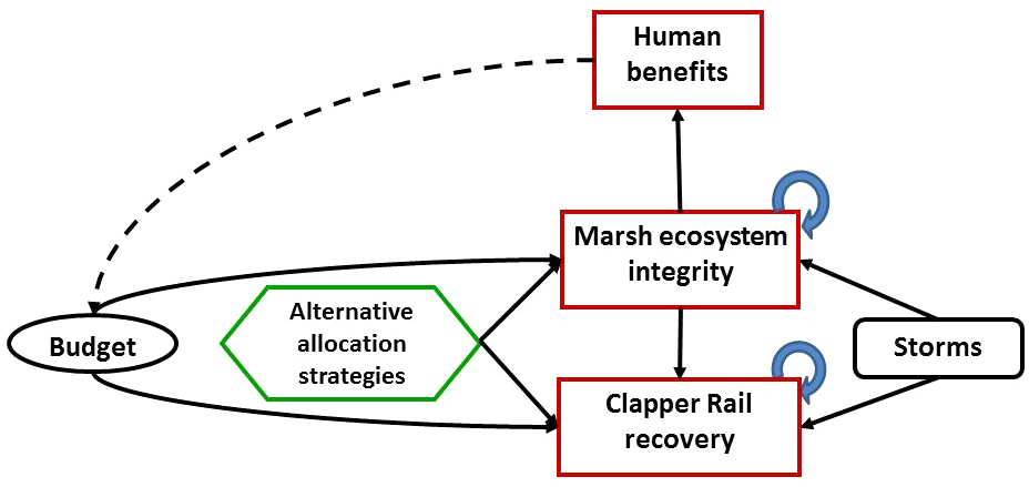 Fig 4 Influence Diagram For Conservation Of Tidal Marshes In San