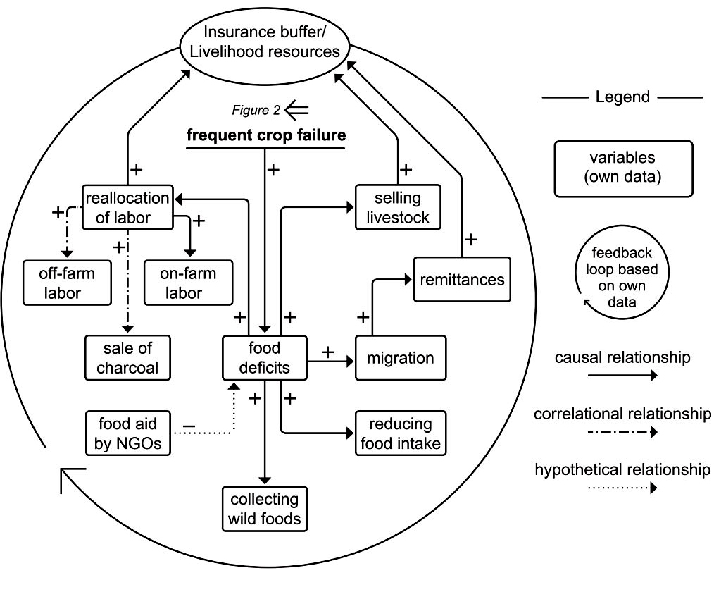 fig 3 a causal loop diagram showing the insurance buffer. Black Bedroom Furniture Sets. Home Design Ideas