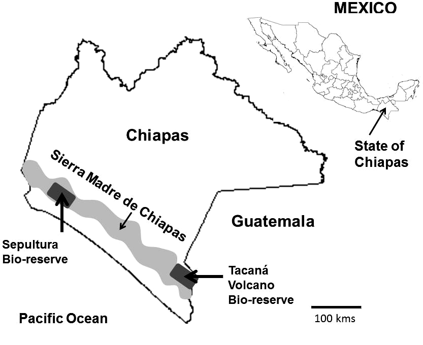 Fig 3 Map Of Chiapas In Southern Mexico Shade Coffee Is Produced
