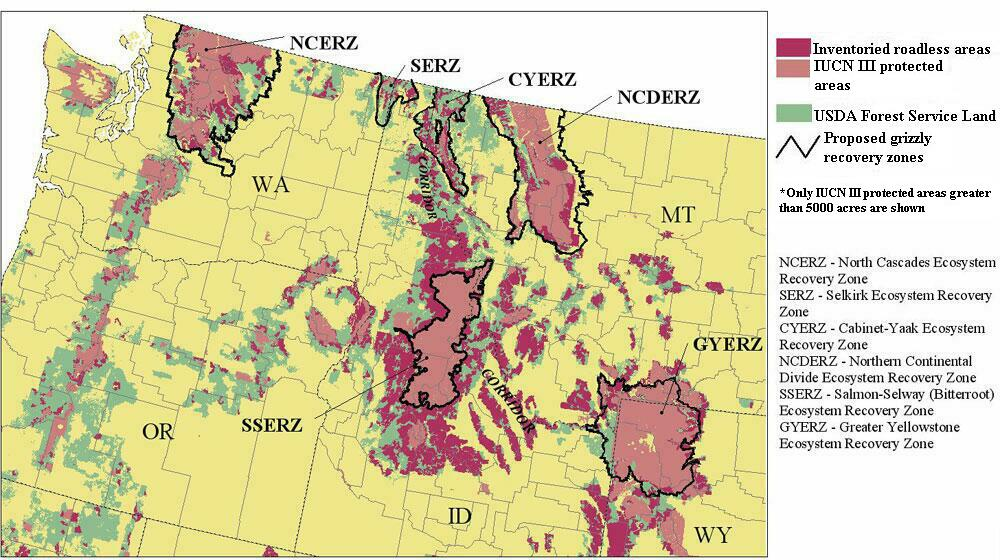 Conservation Ecology USDA Forest Service Roadless Areas