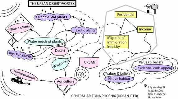 Conservation Ecology Conceptual Models As Tools For Communication